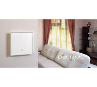 Радиопульт DeLUMO - Управление одной зоной освещения